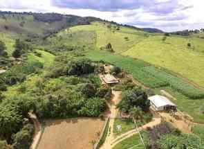 Fazenda, 4 Quartos, 1 Suite em Desterro de Entre Rios, MG valor de R$ 1.400.000,00 no Lugar Certo
