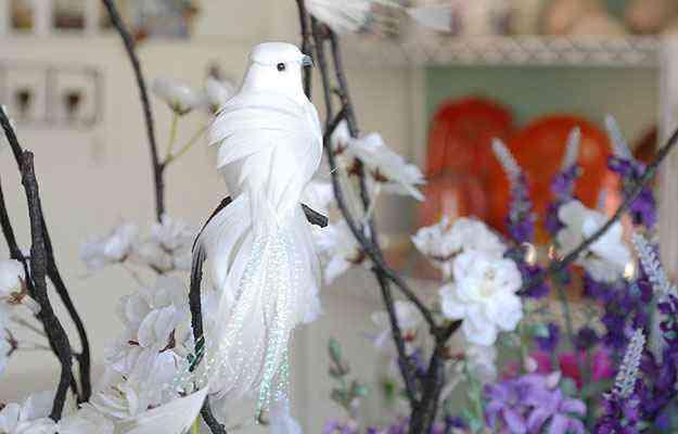 As aves transmitem a sensação de paz e liberdade, como este pássaro branco na loja de Aluízio Figueiredo - Carlos Altman/EM/D.A Press