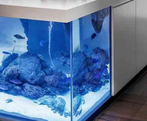 Aquário gigante criado pelo designer holandês Robert Kolenik confere um visual impressionante à cozinha