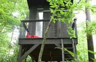 Norte-americana constrói casa na árvore gastando pouco mais de R$ 3 mil. Pequena morada instalada no Tenessi mostra que, com algum esforço, dá para viver bem, em sintonia com a natureza, e ainda economizar