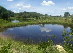 Rural em Zona Rural, Goianésia, GO valor de R$ 750.000,00 no Lugar Certo