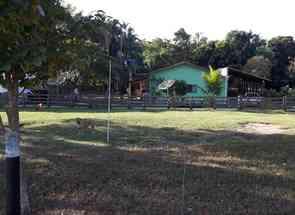 Chácara, 6 Quartos em Setor Central, Santa Cruz de Goiás, GO valor de R$ 1.000.000,00 no Lugar Certo