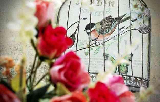 Flores e pássaros se destacam na Estação Primavera - Carlos Altman/EM/D.A Press