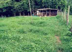 Chácara em Zona Rural, Piracanjuba, GO valor de R$ 350.000,00 no Lugar Certo