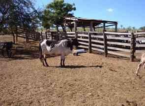 Fazenda em Zona Rural, Uruaçu, GO valor de R$ 4.500.000,00 no Lugar Certo