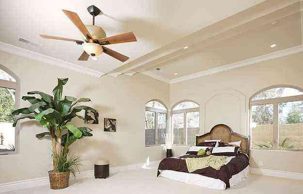 Shutterstock/Reprodução/Internet/bbel.com.br