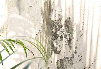 Gladyston Rodrigues/AOCUBO FILMES - 18/08/2009 -
