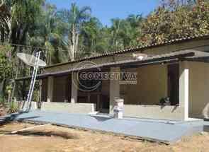 Chácara em A 14km de Bela Vista de Goiás, Zona Rural, Bela Vista de Goiás, GO valor de R$ 1.000.000,00 no Lugar Certo