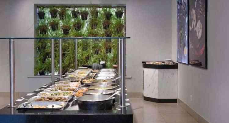 Uso de plantas dá charme especial ao espaço e ajuda na experiência do cliente  - Gustavo Xavier/Divulgação