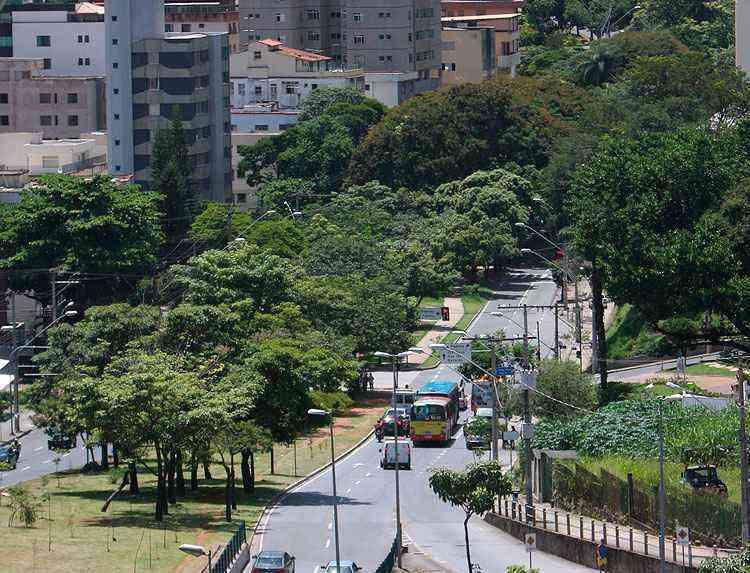 Edifícios residenciais permeiam a paisagem arborizada e arejada do bairro, que começou a ser loteado em 1966 - Edesio Ferreira/EM/D.A Press