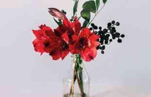 Produto da Uma Floricultura