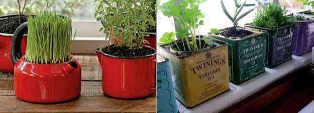 Até mesmo canecas e latas podem servir para criar e dar charme às hortas - Reprodução da internet/http://divinaitaliapraia.com.br