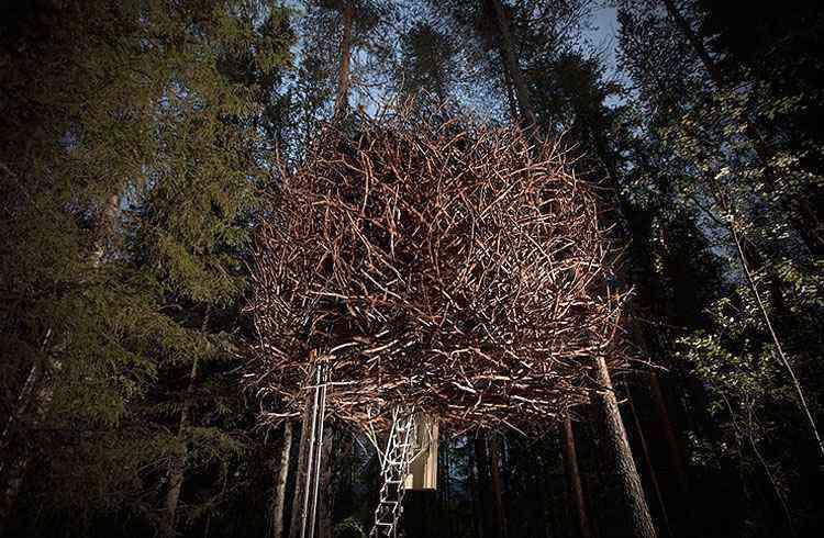 Quarto inspirado em ninho de pássaros no Treehotel, na Suécia - Treehotel/Divulgação