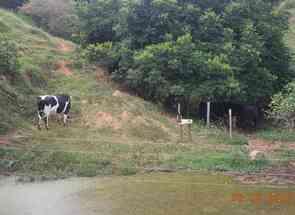 Sítio em Zona Rural, Zona Rural, Oliveira, MG valor de R$ 530.000,00 no Lugar Certo