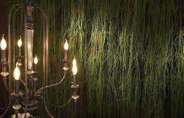 A parede verde é um dos destaques do Gazebo, que valoriza elementos regionais - Thiago Ventura/EM/D.A Press
