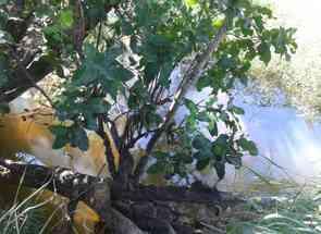 Chácara em Rod Go-020, Zona Rural, Piracanjuba, GO valor de R$ 1.000.000,00 no Lugar Certo