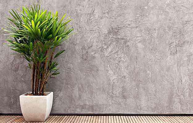 Revestimentos reproduzem suaves nuances, que seguem tendência do cimento queimado - Bricolagem Brasil/Divulgação