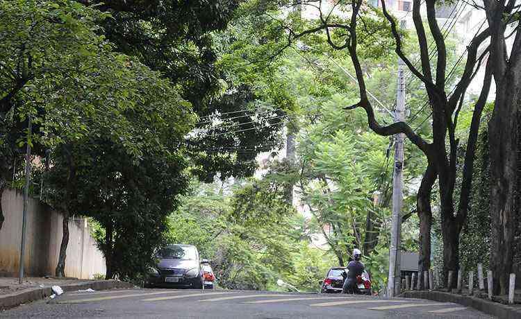 Luxemburgo tem ruas arborizadas, impactando a qualidade de vida dos moradores - Beto Magalhães/EM/D.A Press - 19/12/14
