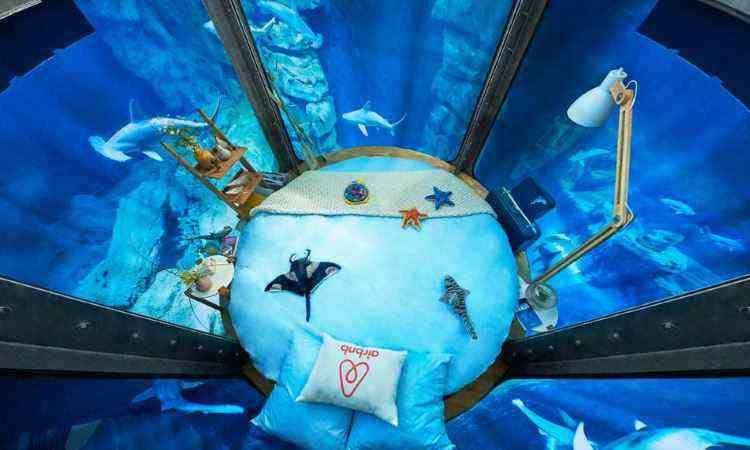 Amplas paredes em 360 graus oferecem visão completa ao redor - Airbnb/Divulgação