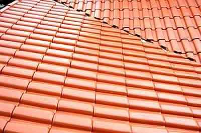 Reprodução/Internet/www.neiafone.com.br