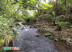 Fazenda, 1 Quarto em Rua Belisário Cunha, Centro, Lagoa Dourada, MG valor de R$ 720.000,00 no Lugar Certo