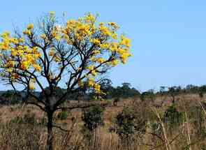 Fazenda em Zona Rural, Zona Rural, Ipameri, GO valor de R$ 22.500.000,00 no Lugar Certo