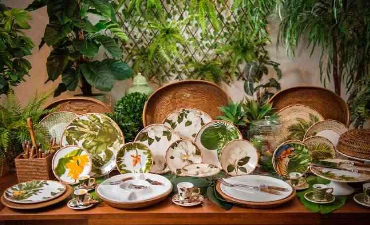 Para criar ambientes urban jungle em casa, é preciso checar se as condições do local condizem com o que a planta precisa - Cecilia Dale/Divulgação