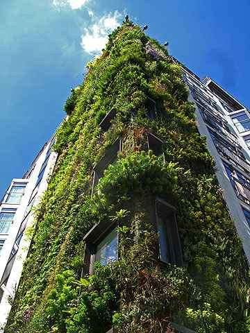 Londres - Vertical Garden/Divulgação